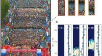 Изображение A: Стартовая площадка Чикагского марафона Bank of America 2016 года. Изображение B: увеличенная область изображения А, на которой обозначена последовательность движений организаторов марафона (желтые жилеты), направляющих бегунов к стартовой зоне. Это вызывает нарушения скорости и плотности, которые распространяются с постоянной скоростью по толпе. Изображение C: волны скорости и плотности в одной и той же толпе, распространяющиеся в направлении, противоположном движению людей.